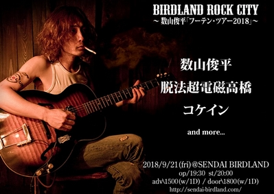 BIRDLAND ROCK CITY
